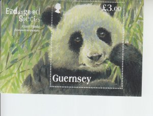 2013 Guernsey Giant Panda SS  (Scott NA) MNH
