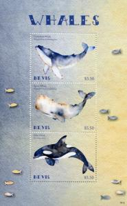 Nevis 2018 MNH Whales Humpback Killer Sperm Whale 3v M/S Marine Animals Stamps