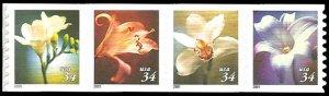 PCBstamps   US #3478/3481a Coil Strip $1.36(4x34c)Flowers, MNH, (6)