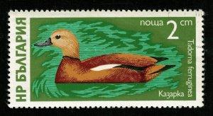 Bird Bulgaria 2ct (TS-664)