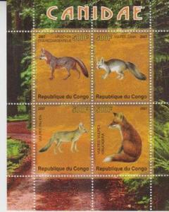 Congo 2007 Canidae Fox Wild Animals Mammal Fauna Nature M/S Stamps (1) MNH perf