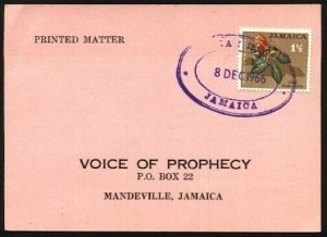 JAMAICA 1966 local postcard - MAY DAY rubber oval datestamp................96167
