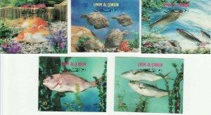 3D 1972 Fish from Umm Al Qiwain Set of 5