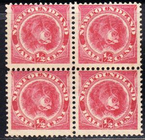 NEWFOUNDLAND # 56 Mint NH - block of four