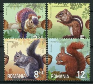 Romania Wild Animals Stamps 2020 MNH Squirrels Red Gray Grey Squirrel 4v Set