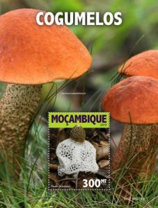 MOZAMBIQUE - 2019 - Mushrooms - Perf Souv Sheet - MNH