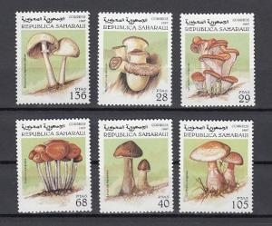 Sahara, 1997 Cinderella issue. Various Mushrooms issue.
