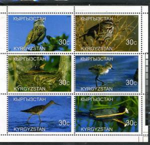 Kyrgyzstan 1999 Birds Sheet Perforated mnh.vf