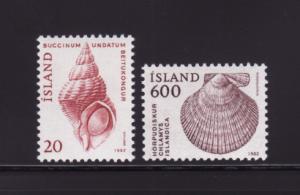 Iceland 552-553 Set MNH Sea Shells