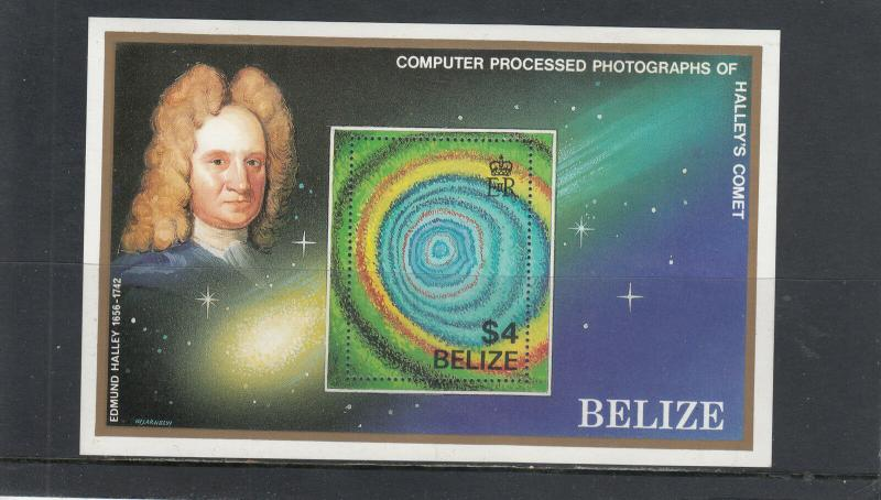 BELIZE 814 SOUVENIR SHEET MINT 2014 SCOTT CATALOGUE VALUE $9.00