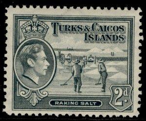 TURKS & CAICOS ISLANDS GVI SG198, 2d grey, VLH MINT.