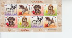 2017 Belarus Puppies SS (Scott 1031-34a) MNH