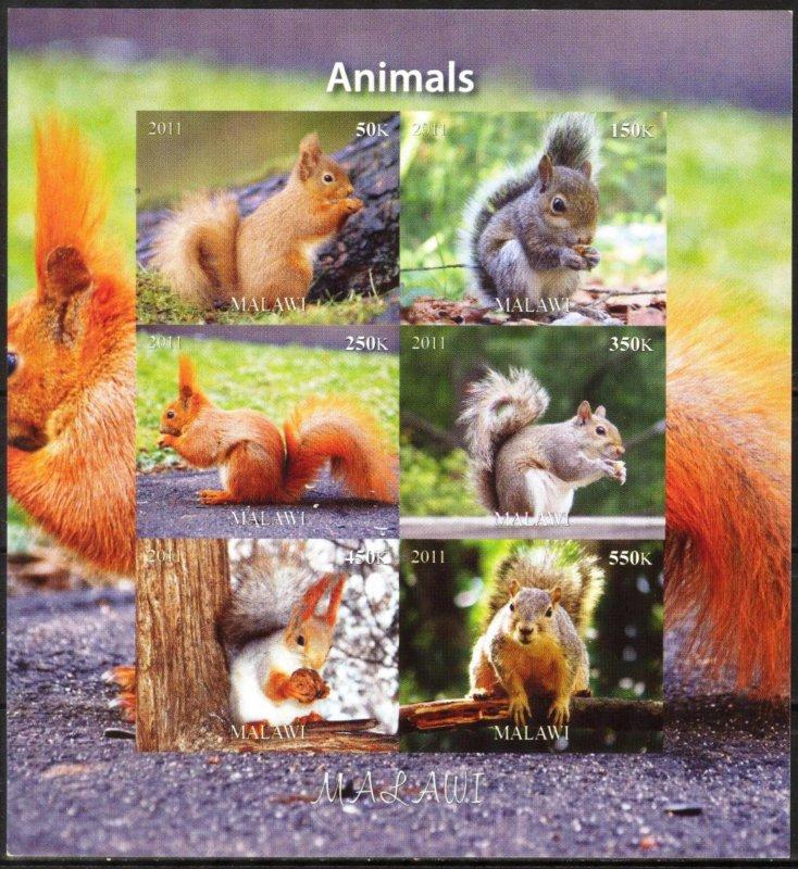 Malawi 2011 Animals Squirrels (2) Imperf. MNH Cinderella !