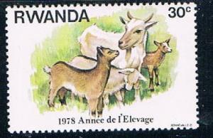 Rwanda 898 MNH Goats (R0355)+