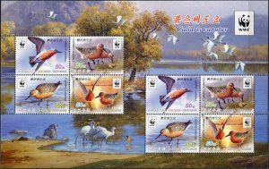 Korea 2015. Red knot (Calidris canutus) (MNH OG) Miniature Sheet