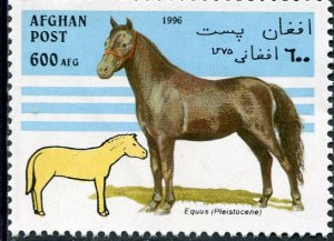Afghanistan 1996 HORSE 1 value Perforated Mint (NH)