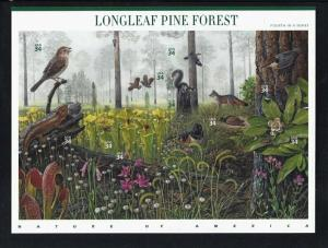 U.S. SCOTT #3611 - NATURE OF AMERICA SERIES #4 - LONGLEAF PINE  -  MNH SHEET