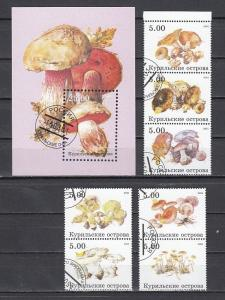 Kuril Is., 2001 Russian Local. Mushrooms set & s/sheet. Canceled. C.T.O.