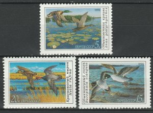 USSR 1990 Birds, Ducks 3 MNH stamps