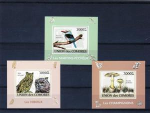 Comoro Is.2009 Birds/Owls/Mushrooms 3 SS Imp.MNH VF