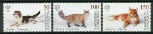 KYRGYZSTAN (KEP) / 2019 - Domestic Cats (Scottish fold), MNH
