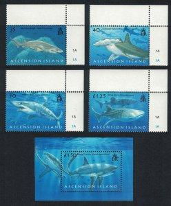 Ascension Sharks 4vCorners + MS SG#999-MS1003