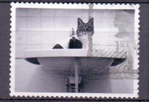 Great Britain 2001 used cats and dogs 1st cat in washbasin   #