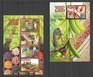 ST2126 2016 MOZAMBIQUE BIRDS FOOD INTERNATIONAL PULSE YEAR 1KB+1BL MNH