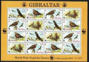 Gibraltar Birds WWF Red Kite Sheetlet of 4 sets SG#784-787 MI#774-777 SC#716 a-d