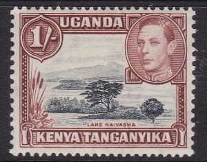 UGANDA /TANGANYKA/KENYA ^^^^sc# 8  KEY  high value   mint HR $$@ lar4993uga