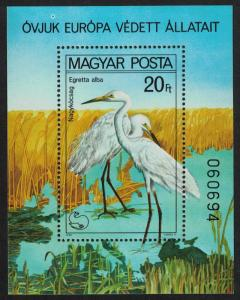 Hungary Great Egrets Protected Birds MS SG#MS3346 MI#Block 146A