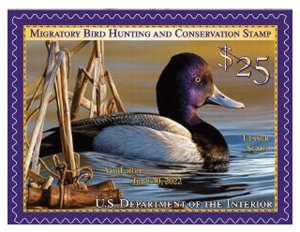 #RW88 2021 Federal Duck Stamp (Sheet Stamp)  (After June 25 2021)- MNH