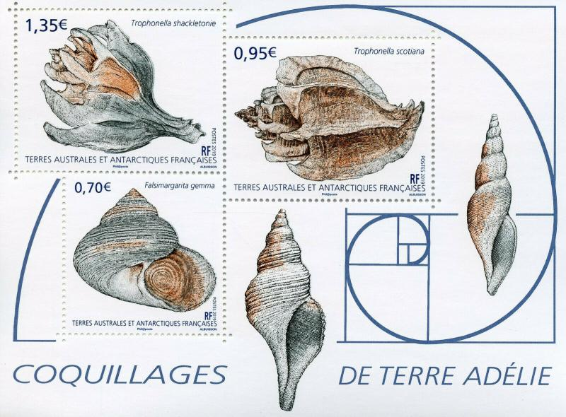 FSAT TAAF 2019 MNH Seashells Adelie Land 3v M/S Coquillages Shells Marine Stamps