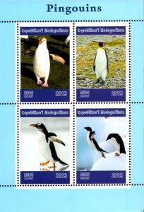 Madagascar 2019 Penguin Birds 4v MNH S/S. (#038)