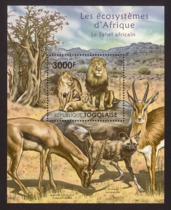 Togo - New Issue - MNH African Sahel Animals (S/S)