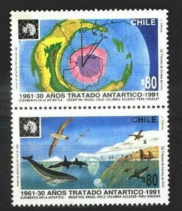 #713 CHILE 1991 ANTARCTIC TERRITORY TREATY MAP FAUNA BIRDS WHALES YV 1770-1 MNH