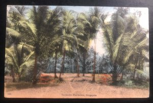 1918 Singapore Strait Settlements Postcard cover to Zurich Switzerland Coconut