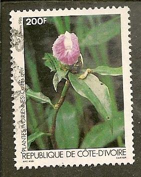 Ivory Coast       Scott 775    Flower, Flora      Used