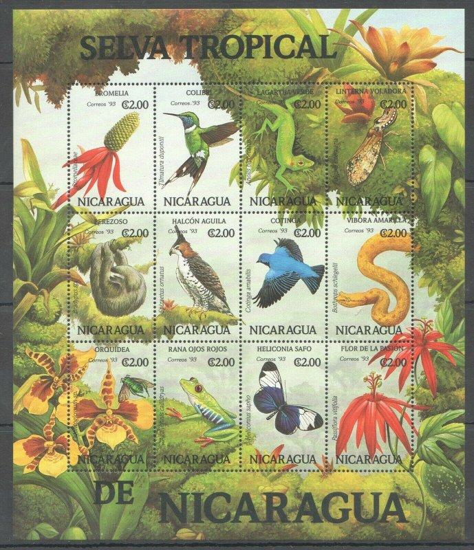 PK203 1993 NICARAGUA FAUNA BIRDS SELVA TROPICAL DE NICARAGUA 1SH MNH STAMPS