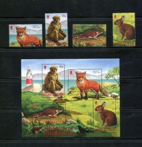 Gibraltar 2002  # Wildife S/Sheet & set MNH # 909-912a