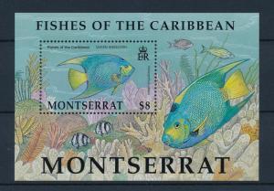 [40600] Montserrat 2002 Marine Life Fish MNH Sheet