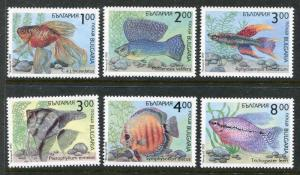 Bulgaria 3766-3771 MNH. Marine Life Fish 1993. x29343