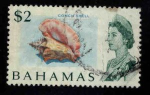 Bahamas Scott 265 Used Conch Shell stamp
