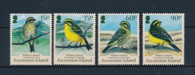 [52357] Ascension 2010 Birds Vögel Oiseaux Ucelli Yellow canary MNH