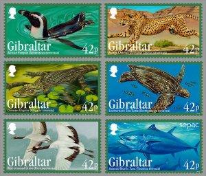 2013 Gibraltar 1568-1573 Sea fauna