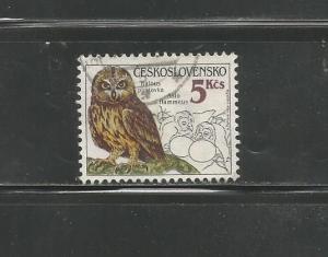 #2624 Owls