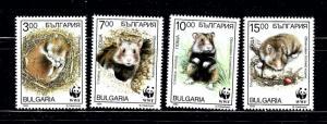 Bulgaria 3831-34 MNH 1994 W.W.F. set