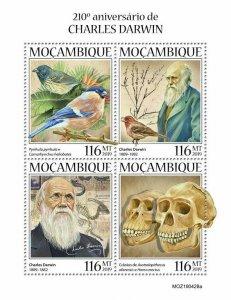 Z08 IMPERF MOZ190428a MOZAMBIQUE 2019 Charles Darwin MNH ** Postfrisch