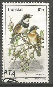 TRANSKEI, 1980, CTO 10c, Birds.Scott 80