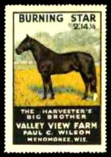 Valley View Farm BURNING STAR Horse Advertising Poster Stamp